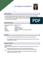 HOJA DE VIDA MARIA ANGELICA VILLAMIZAR.pdf