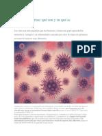 principales mortales virus  y bacterias