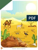 desert_copy.pdf