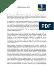PLAN   ESTRATEGICO   DE  D'NNOS YEfinal
