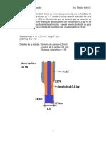 bache balanceado 2020 solucion (1).pdf