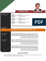 4-modele-cv-efficace-orange-97-2003.doc