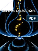 Defense energetique.pdf