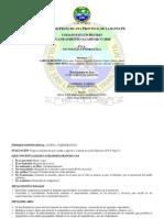 PIA_Informatica_2010
