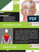 NUCA Y REGIÓN DORSAL - DOCTOR AGÜERO - 22C