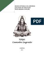 Cavalari.pdf