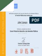 gerentes publicos.pdf