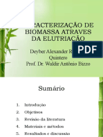 Caracterização da biomassa através da fluidização