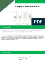 Fluidização e regimes fluidodinâmicos.pptx