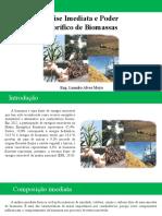 Análise imediata e poder calorífico de biomassas.pptx