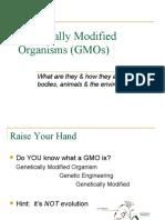 GeneticallyModifiedOrganismsGMOs