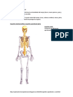 252336329-Esqueleto-Apendicular-y-Axial.docx