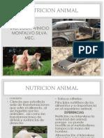 NUTRICION ANIMAL 1.pdf