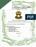 Monografia Patrullero Inteligentes en Lima y Puno
