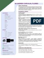 CCarvajal2020CV1.pdf