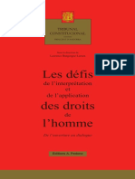 F. Ouguergouz in Les Defis de l'interpretation, Editions Pedone, 2017-6