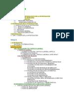POSIBLE ESTRUCTURA.docx