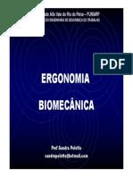 AULA 3 biomecanica [Modo de Compatibilidade].pdf