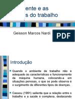 O Ambiente e as doenças do trabalho aula 1atualizada 2012.pptx
