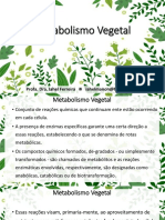 Aula de Farmacognosia Metabolismo Vegetal