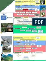 organizador gráfico de las áreas protegidas (7