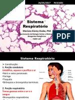 sistema respiratório 2 continuaçõ.pdf