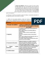357926094-Informe-de-auditoria-AA1