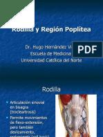 Rodilla y Región Poplítea