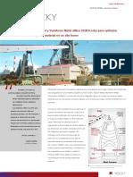 case-nssm.en.es.pdf
