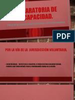 GRUPO 2 DECLARATORIA DE INCAPACIDAD. (1)