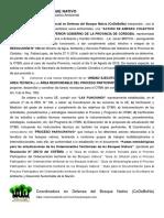 Sintesis Accion de Amparo Colectivo Ambiental - CODEBONA - OTBN nov 2017