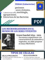2-bacterias.pdf