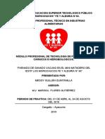 2. INFORME DE PRACTICA  MINI MATADERO CAMAL- Megui_MFG- copia (2) (1)
