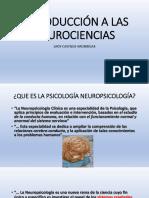 1.DIAP. INTRODUCCIÓN A LA NEUROPSICOLOGÍA LCA.pdf