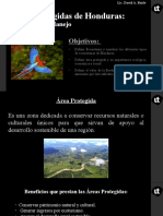 Áreas Protegidas - Categorías de Manejo.pptx