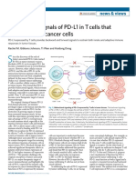 Bidirectional signals of PD-L1 in T cells that fraternize with cancer cells.pdf