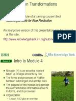 Module 4 ver 4 Nitrogen Transformation