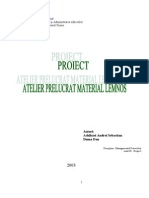 Plan de afaceri - Atelier de prelucrat material lemnos