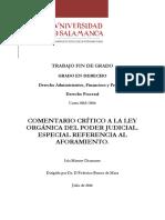 TG_MatuteChamorro_Comentario.pdf