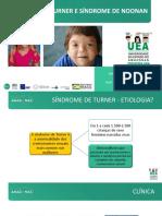 Clube da Criança - Sindrome de Nonan e Turner.pdf