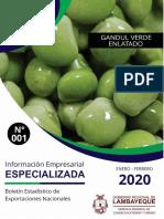 Boletín Gandul 2015-2020 pd.pdf