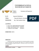 CHANCADO PRIMARIO Y SECUNDARIO2