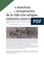 Fósiles muestran rápida recuperación de la vida tras antigua extinción masiva