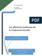 Patho_Affections_bulleuses_Ykhlef