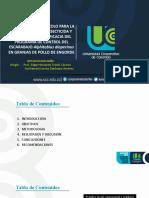 Presentacion_Final_Post_Victor