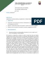 GR4_P2_Pillajo_Torres
