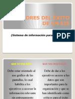 FACTORES DEL ÉXITO DE UN EIS.pptx