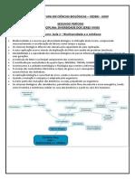 Resumo DSV Aulas 1-32.pdf
