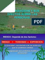 M Seguridad y primeros auxilios.ppt