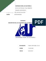DESCRIPCION DE LAS CATEGORIAS BIODIVERSIDAD.docx